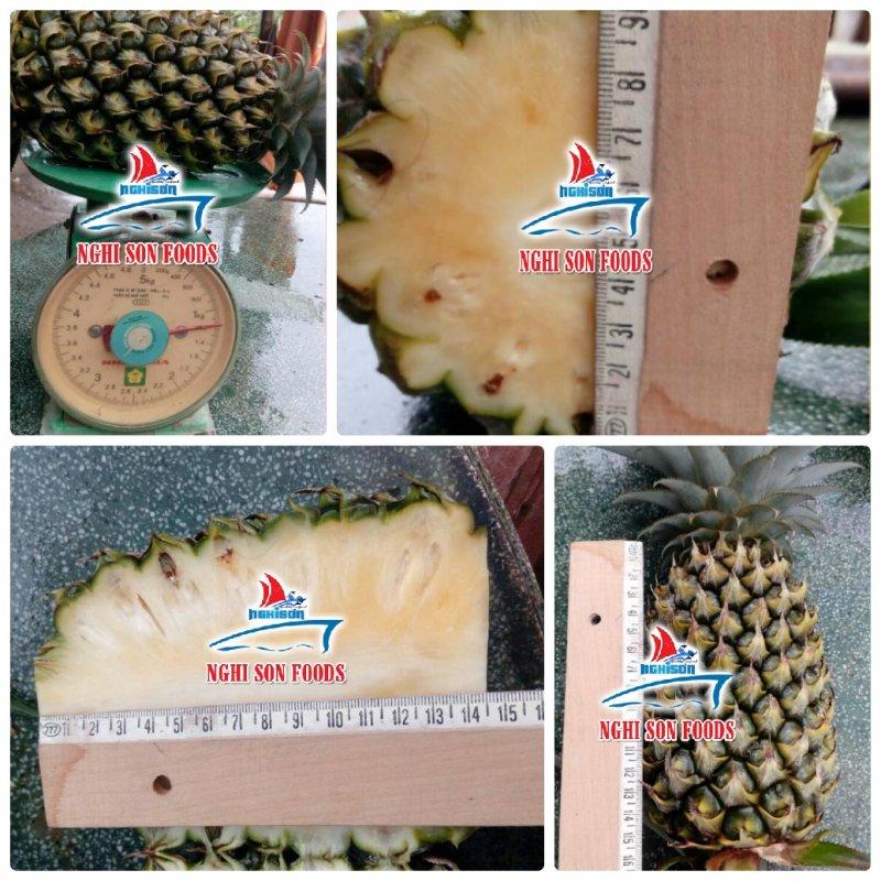 fresh_pineapple