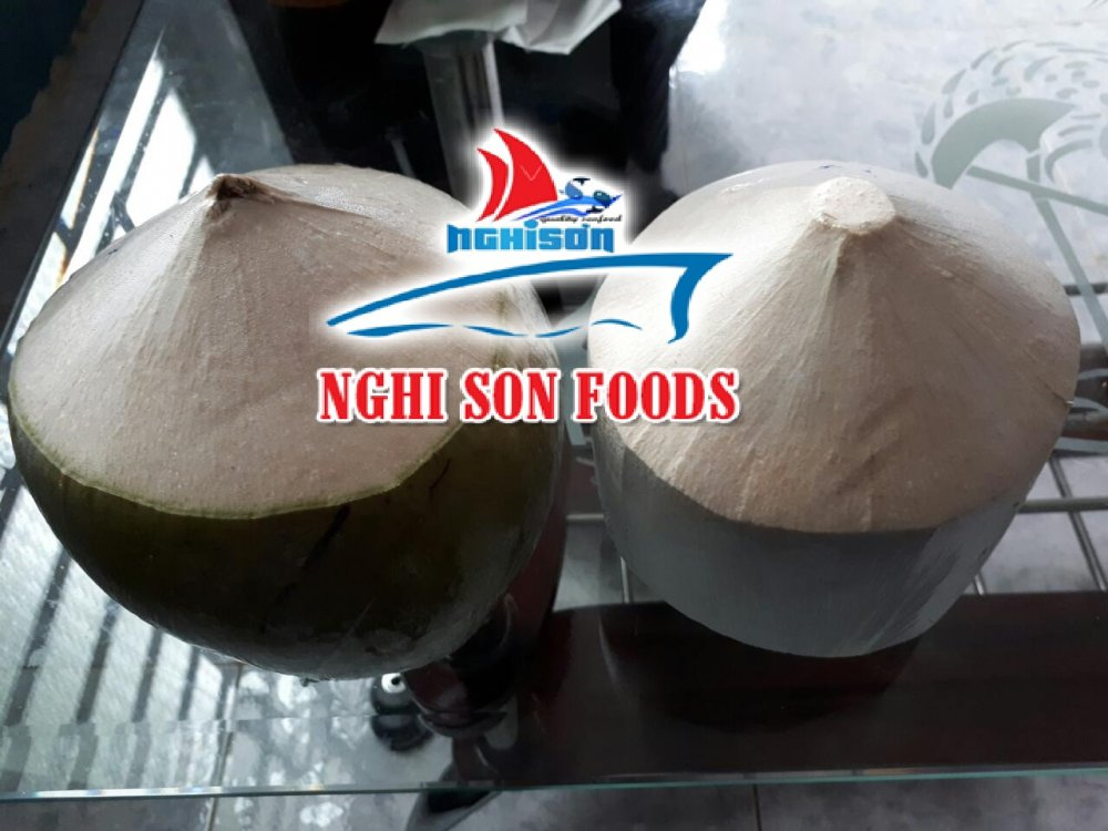 fresh_young_coconut