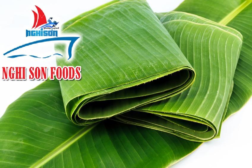 fresh_cavendish_banana_from_vietnam
