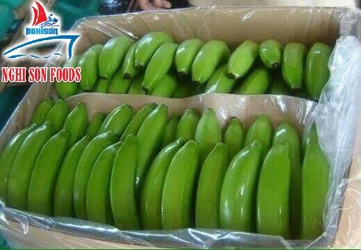 high_quality_banana_from_vietnam