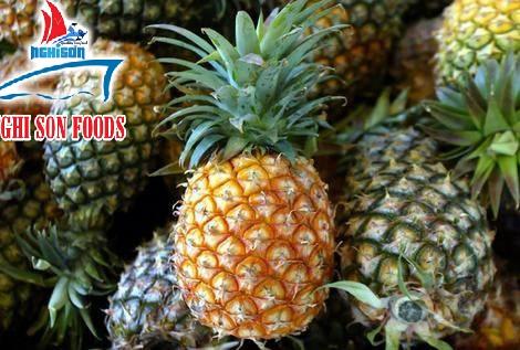 queen_pineapple_from_vietnam