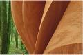 Slice wood