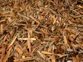 Competitive price for Vietnam Broken Cassia/ Cinnamon