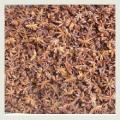 Cassia ( Cinnamon )