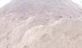 Mùn Cưa