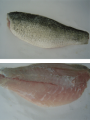 Frozen Barramundi Fillet