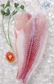 Cá Tra Fillet Đông Lạnh