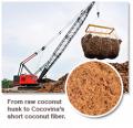 Cocovina's Short Coconut Fiber