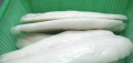 Well trimmed Pangasius