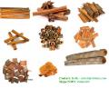 Vietnam whole & splits cinnamon/cassia for sell