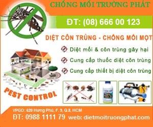 Công Ty Diệt Mối Khử Trùng Trường Phát, Thành phố Hồ Chí Minh