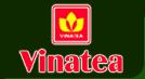 Vinatea JSC, Hà Nội