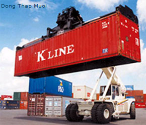 Đặt hàng Dịch vụ xuất nhập khẩu