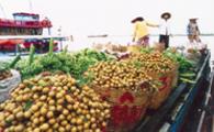 Đặt hàng Du lịch sông Mê Kông