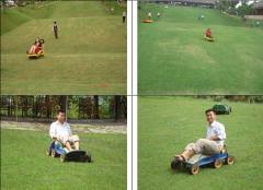 Trượt cỏ