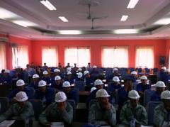 Skillful & diligent worker from Vietnam